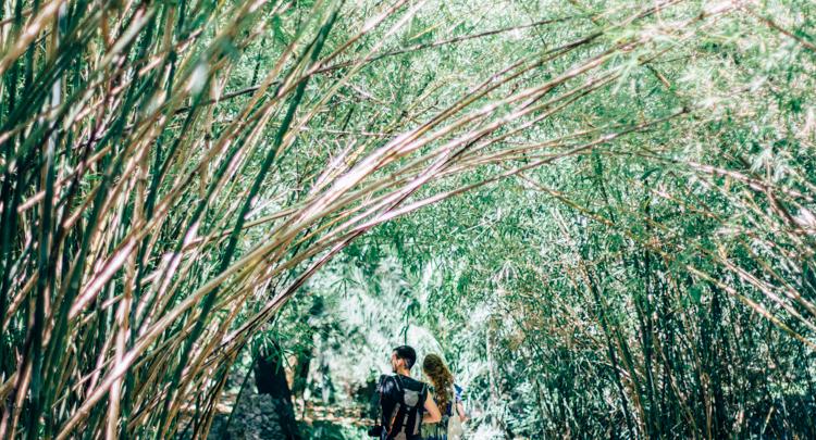 jardim botanico lisboa - hannelore veelaert - au pays des merveilles-6