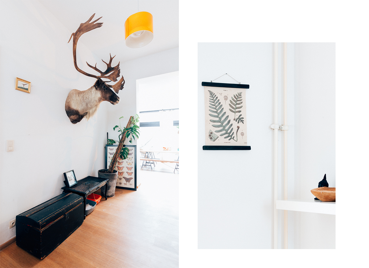 Does It Take To Be An Interior Deer