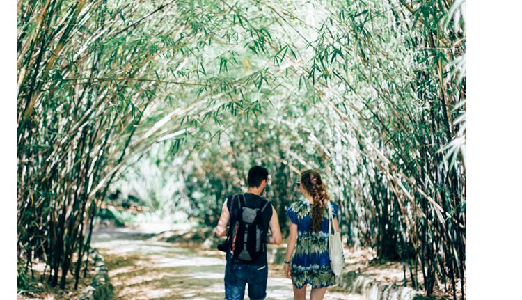 jardim botanico lisboa - hannelore veelaert - au pays des merveilles-5